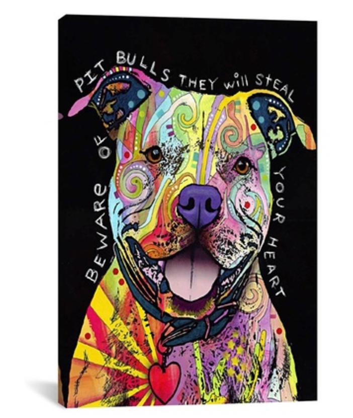 Beware Pit Bull