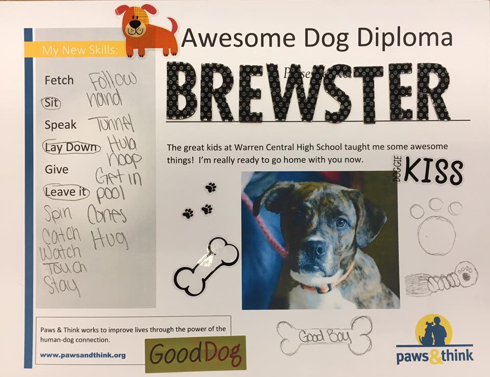 Brewster Paws and Think diploma.jpg