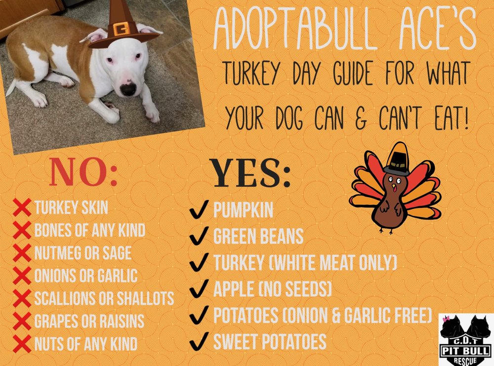 Ace Thanksgiving Tips 2017.JPG