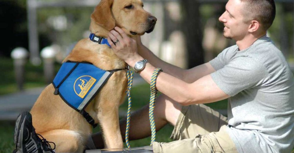 service-dog-and-VA-assistance.jpg