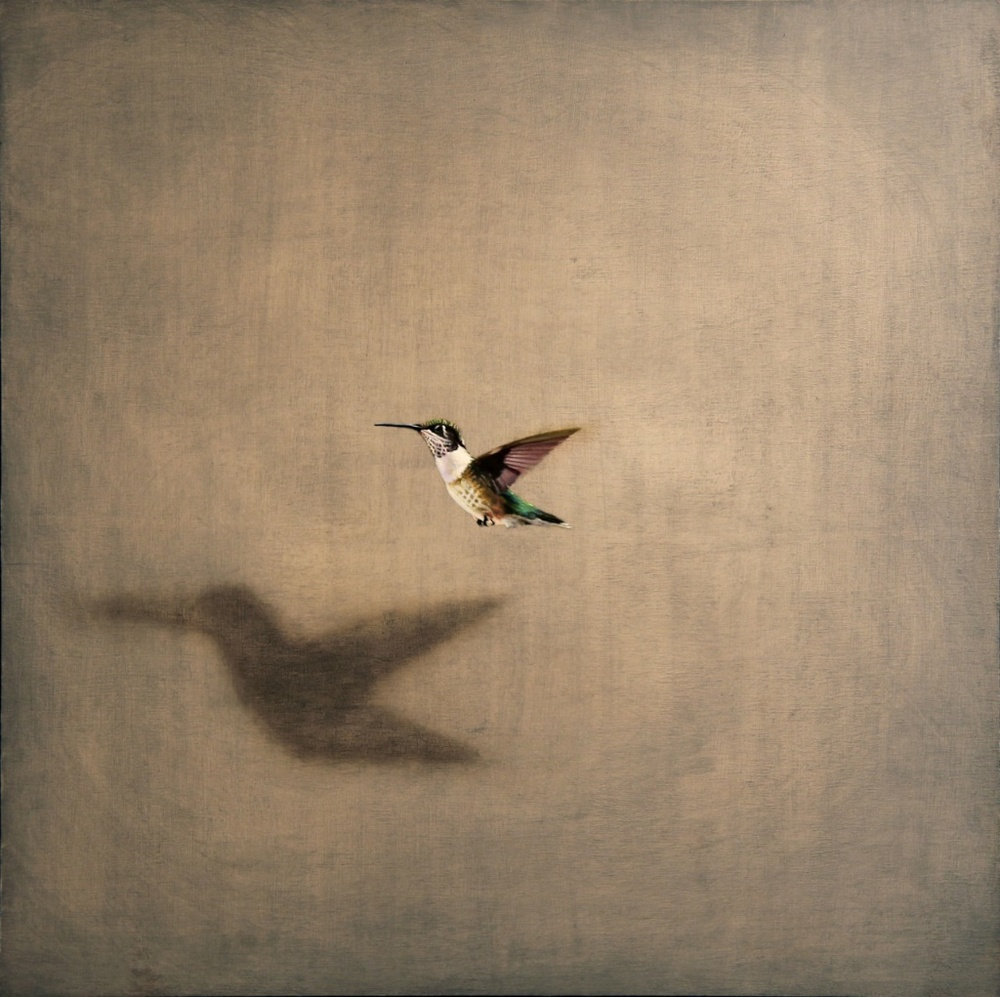"Flyby 18"" X 18"" oil on panel  SOLD"
