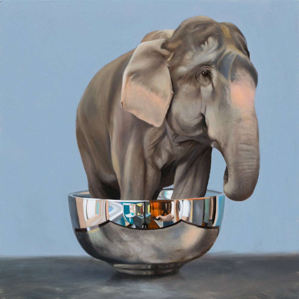 "Lets Talk About the Elephant in the Bowl 10"" x 10"" oil on panel"