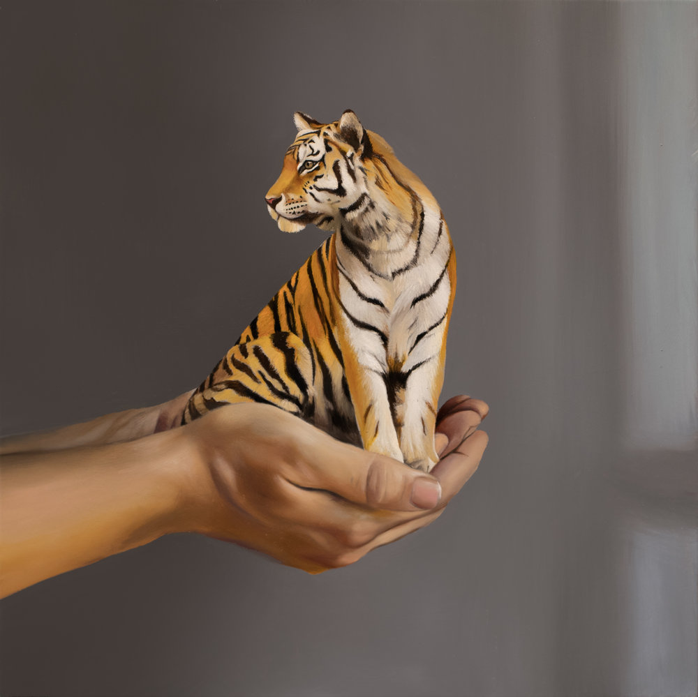 "My Little Tiger 12"" x 12"" oil on panel"