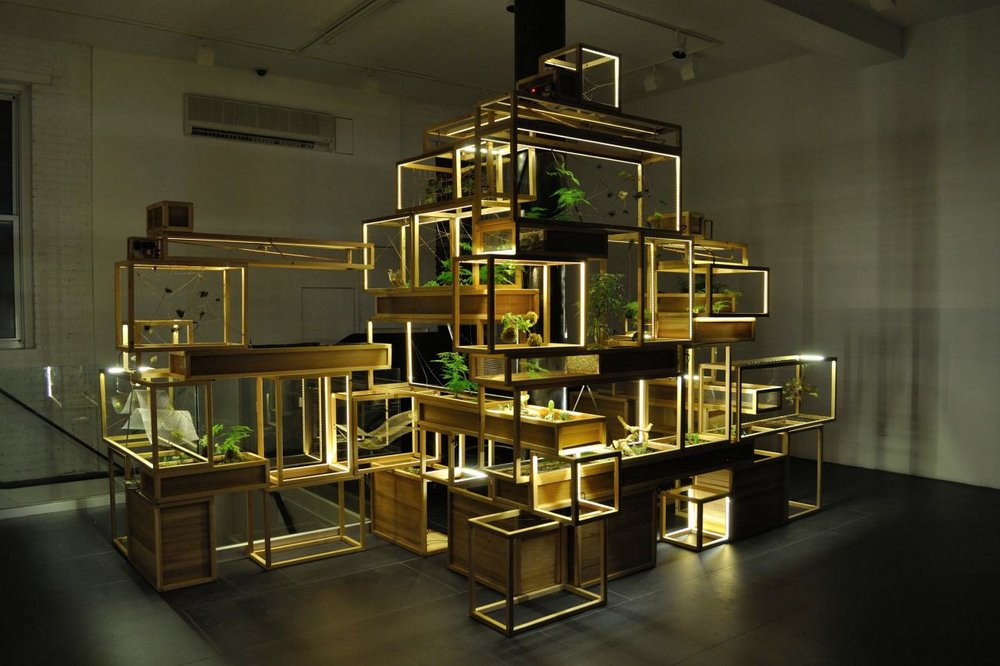 Plant-in City Semi-autonomous system for urban growing