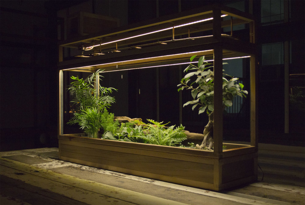 Plant-in-City-01.jpg