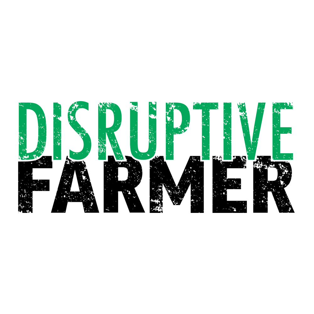 Web Design Disruptive Farmer-01.png
