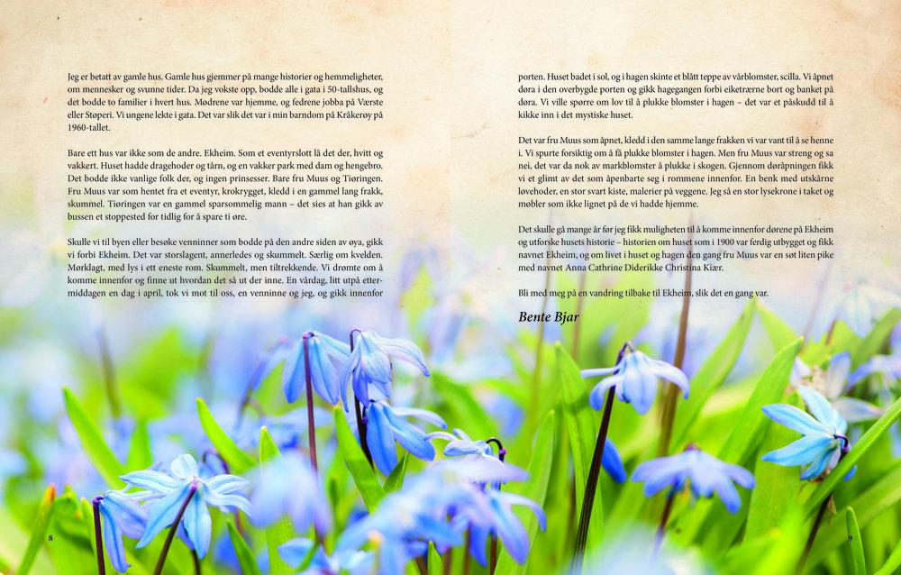 Ekheim_materie_side 8–9.jpg