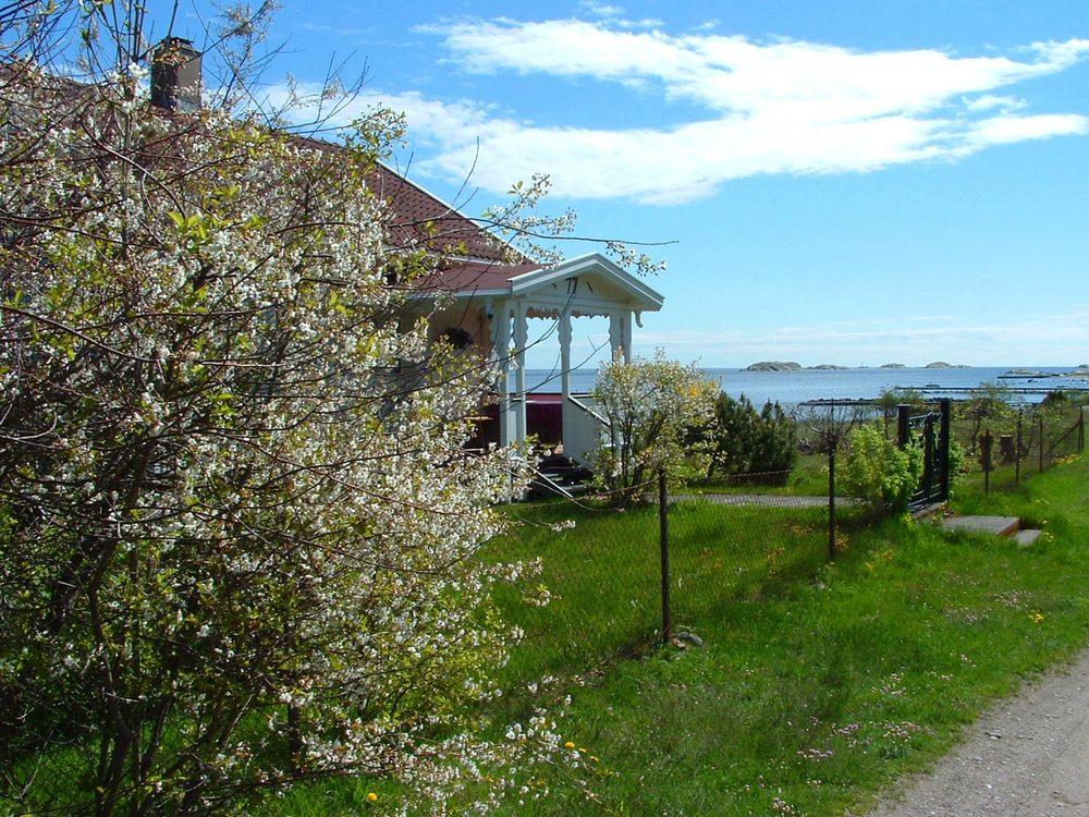 PRICELESS! En tur langs Jørestrandveien og skjærgården på søndre del av Tjøme-øya Hvasser nå i mai måned, er kanskje den vakreste skjærgårdsturen du kan tenke deg. Blir det tilstrekkelig med mange varme soldager, så skal det selv i mai være helt greit med en frisk dukkert også.