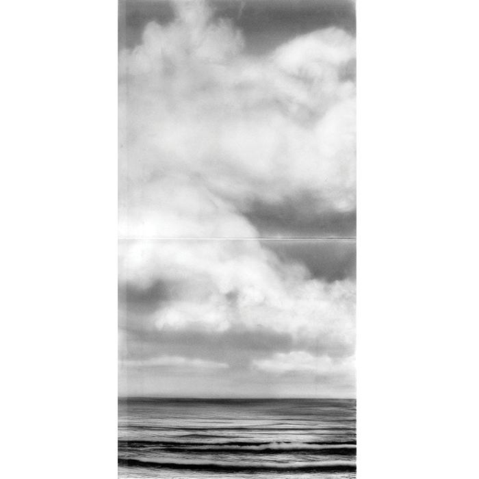 Claudia Melli Da série Azul | Sem Título, n. 206, 2014 Nanquim sob vidro 140 x 70 x 2 cm Díptico 70 x 70 x 2 cm cada