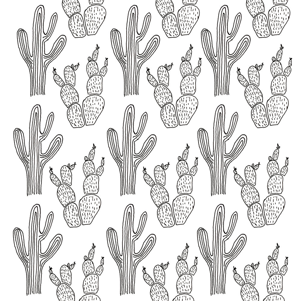 Cacti Pillow.jpg