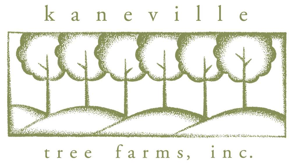 Kaneville Tree Farms