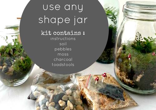 The terrarium kit little lands little lands terrariums melbourne the terrarium kit solutioingenieria Images