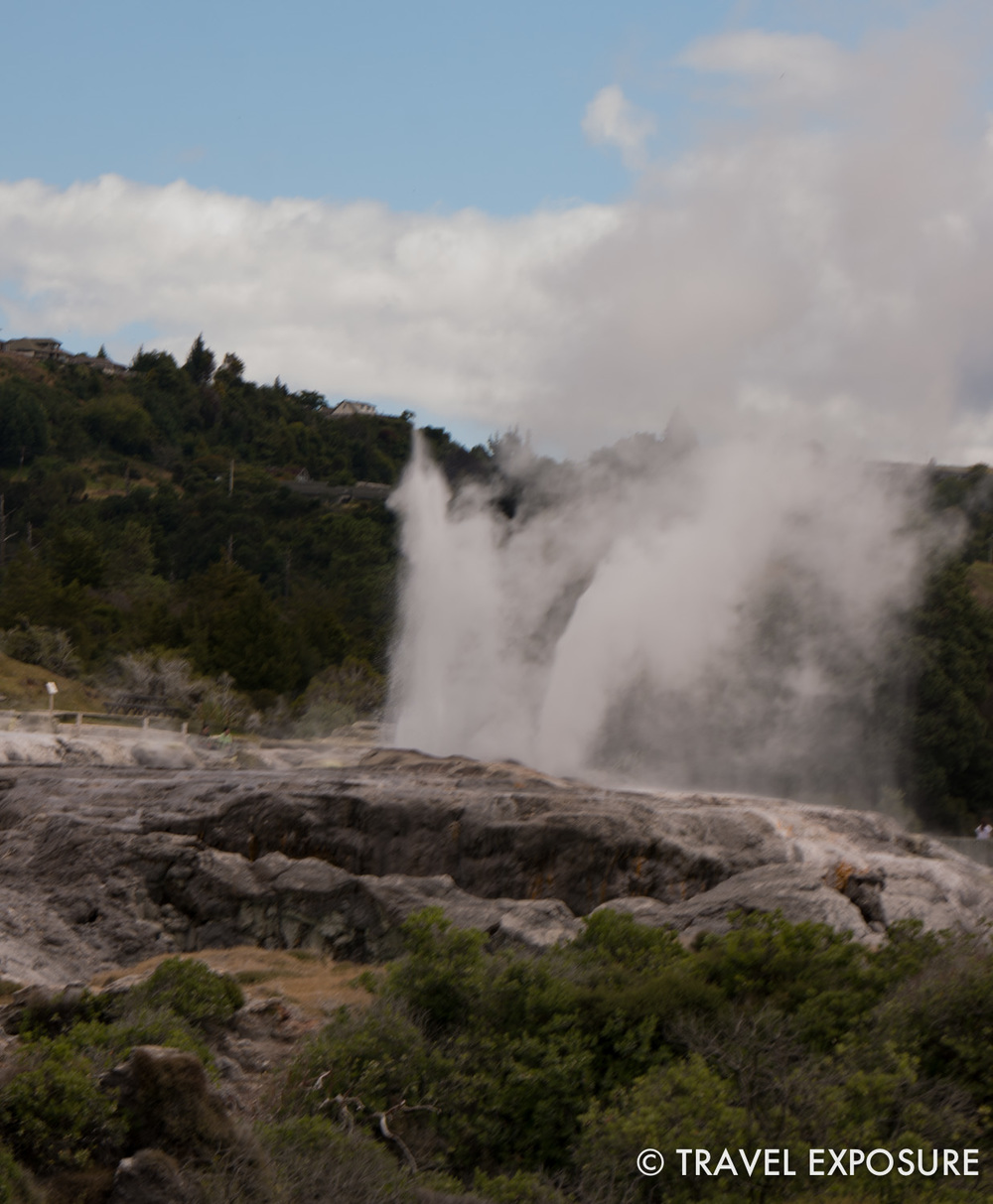 Pohutu geyser at the Whakarewarera thermal village