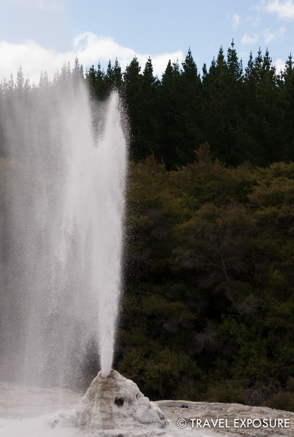 Lady Knox geyser at Wai-O-Tapu thermal wonderland