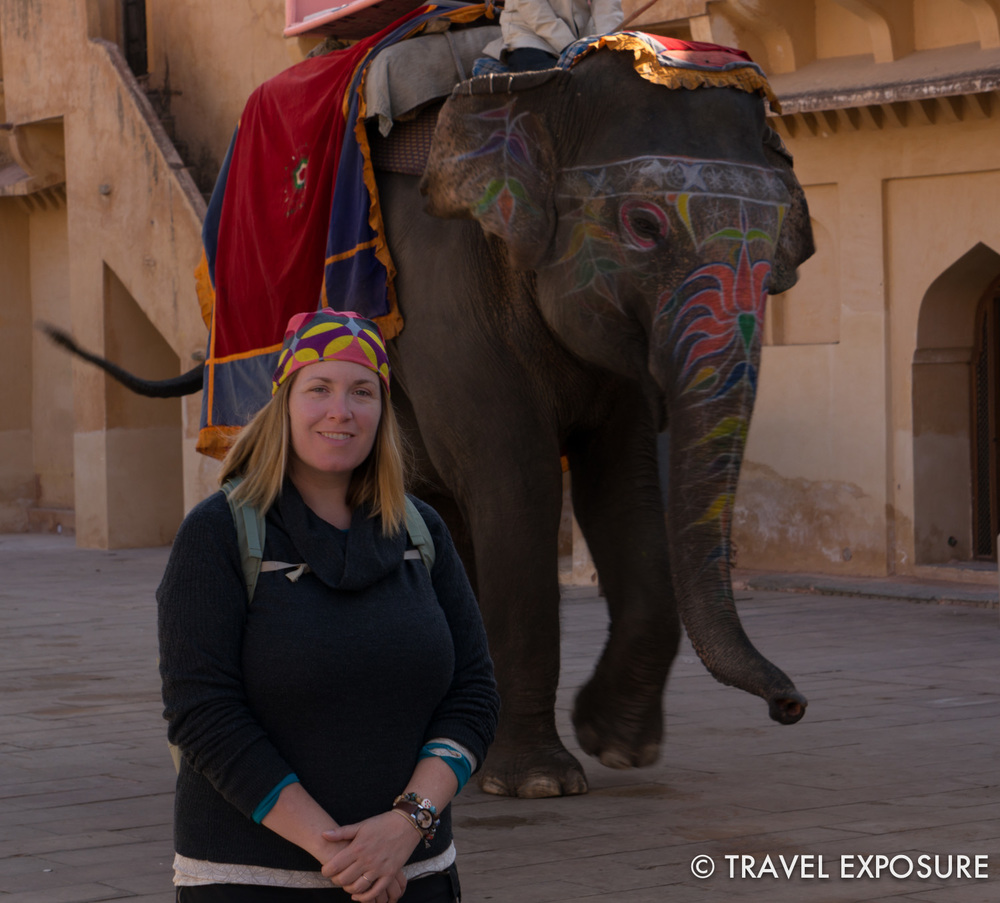 Elephant at t  he Amber Fort/Palace in Jaipur