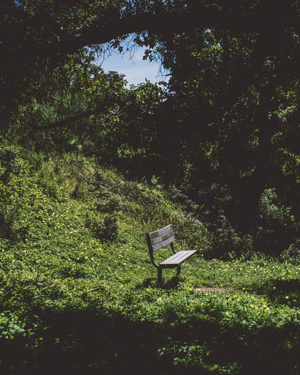 Parma Park-0608.jpg