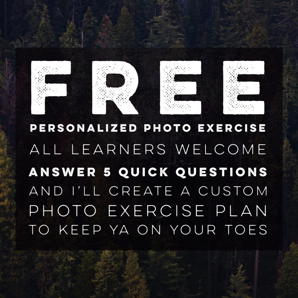 Free! Personalized photoEXercise plan - You can think of me as your photographic personal trainer but instead of pumpin' iron or running laps, we're changing lenses and strolling through meadows.