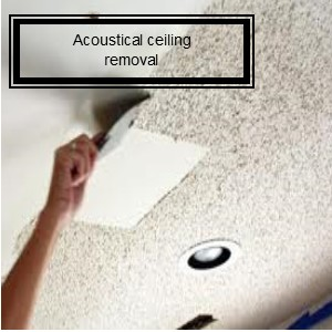 Acoustical ceiling removal web site.jpg