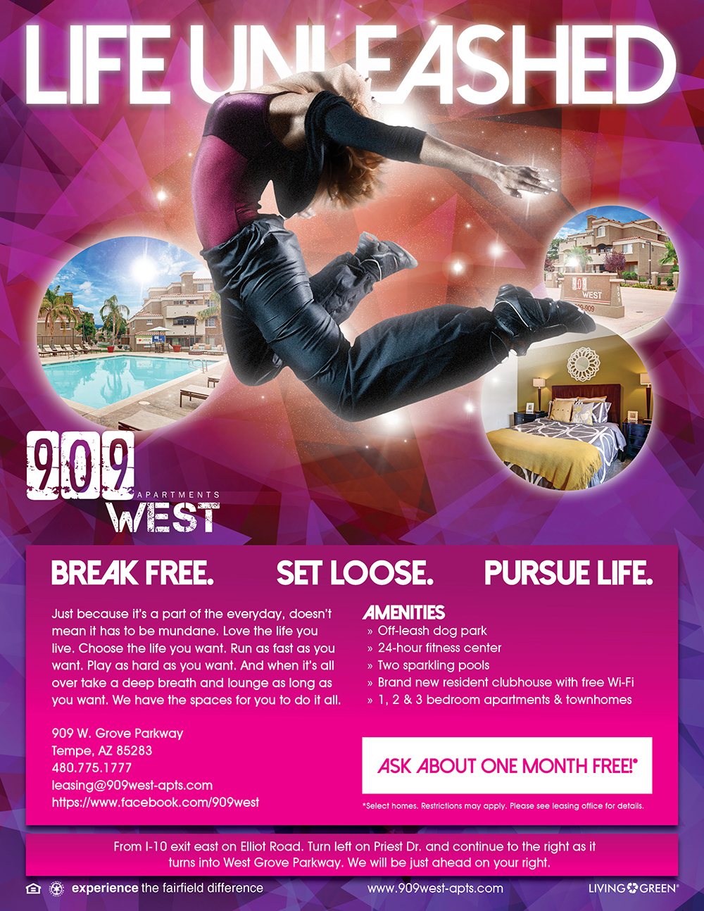 Life Unleashed Flyer - 2