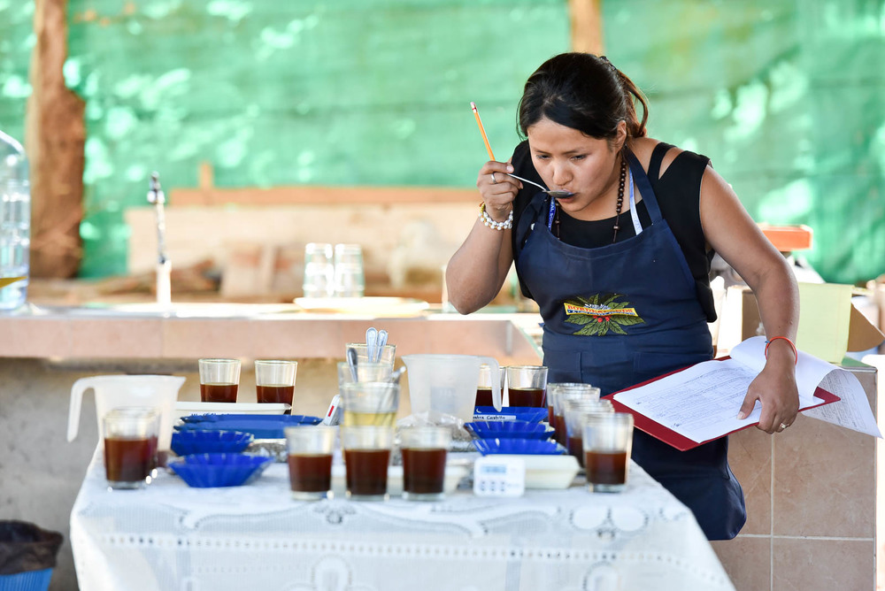 An informal cupping session in the village of La Florida in Colombia's Nariño Department.    Nariño Coffee 51  by  Neil Palmer  (CIAT) is licensed under  CC BY 2.0