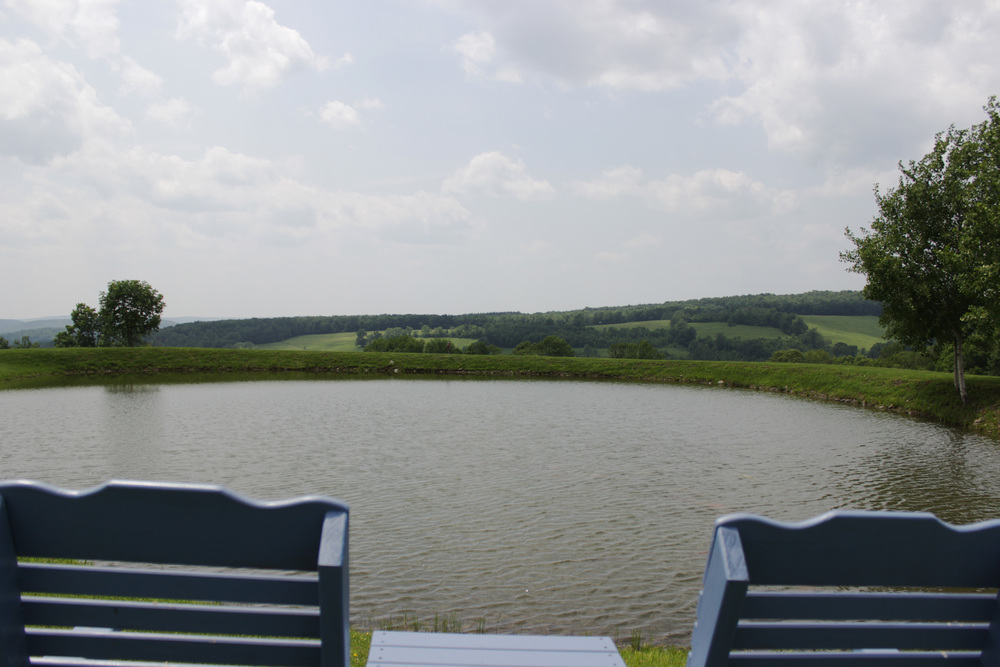 HDHPhotos-171Winn_0046_Layer 4.jpg
