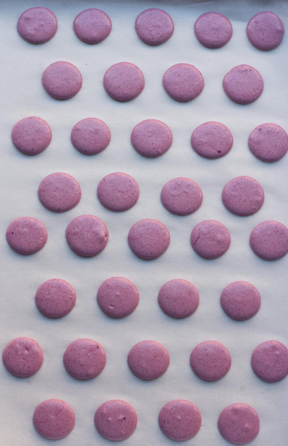 Raspberry Macarons_0005.jpg