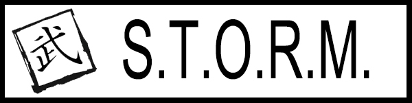 STORM PATCH 2.jpg