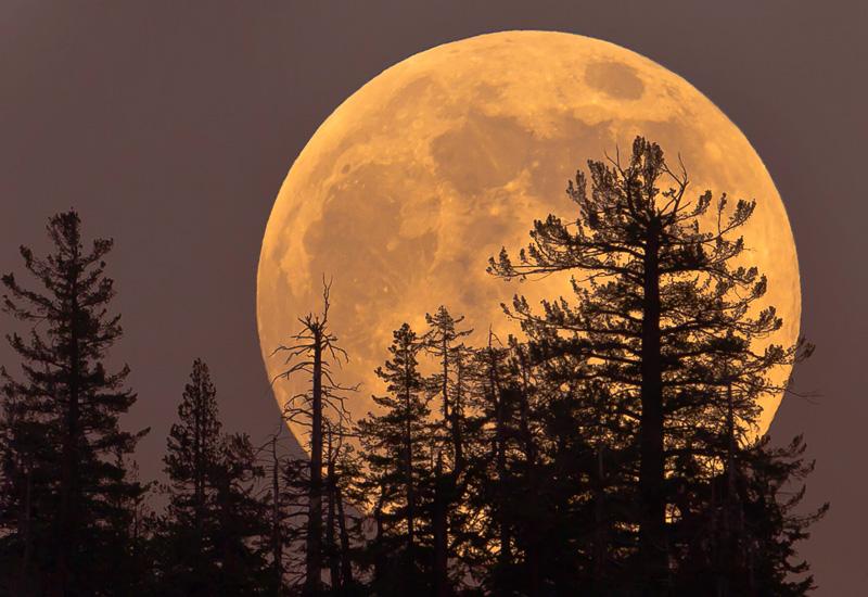 Super-Blue-Blood-Moon.jpg