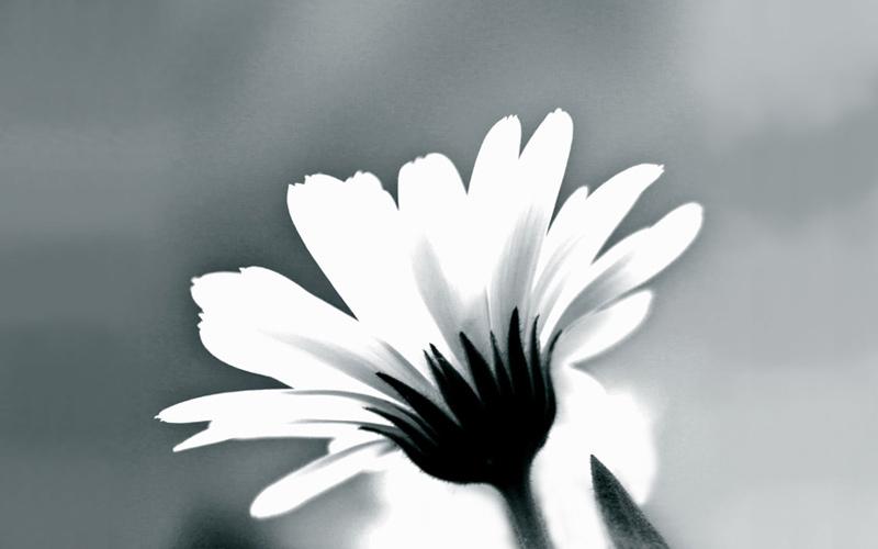 Peter-Hoddle-Sunshine-Coast-Brisbane-There-Is-Always-Hope-Faith-Meditation.jpg