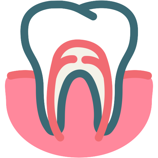 Root Canals   When a cavity is extremely large, it can affect the nerve and cause pain or sensitivity. Root canals treatment removes the bacteria and damaged nerve.