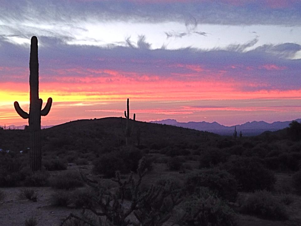 Sunrise on the Javelina race course (photo by Betty Lee).