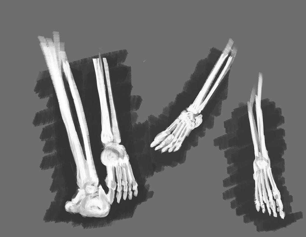 Foot05.jpg