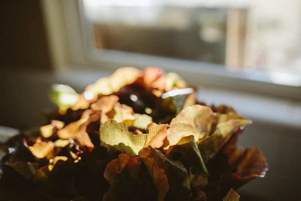 nuna_washing_vegetable-5.jpg