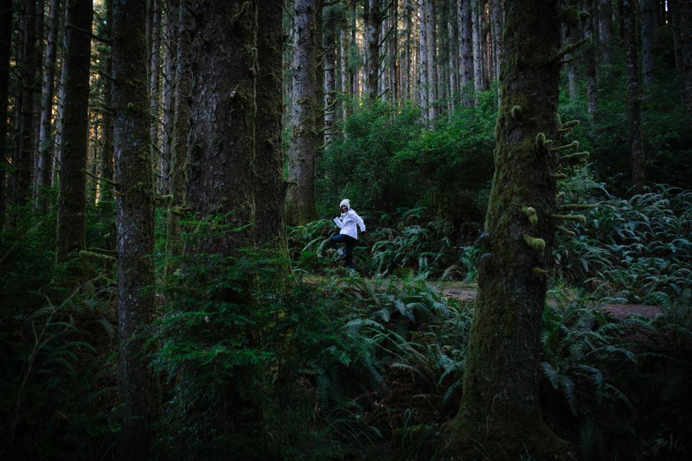 BigSur_last_forest-14.jpg