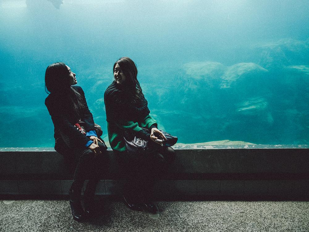 LongBeach_Aquarium-17.jpg