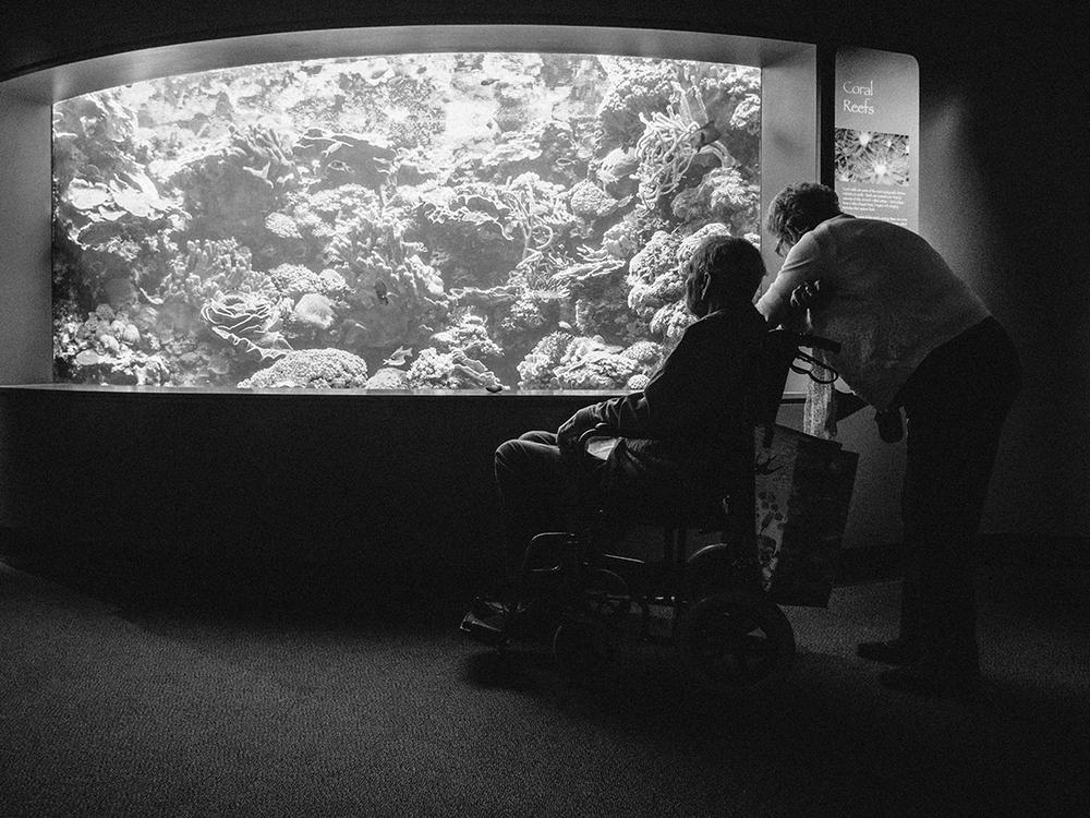 LongBeach_Aquarium-26.jpg