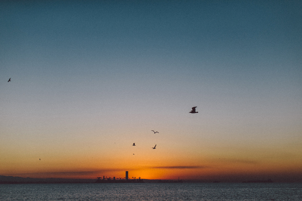 2015_newYear_sunrise-2.jpg