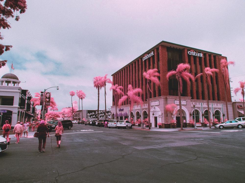 IR_pink_sanDiego-4.jpg