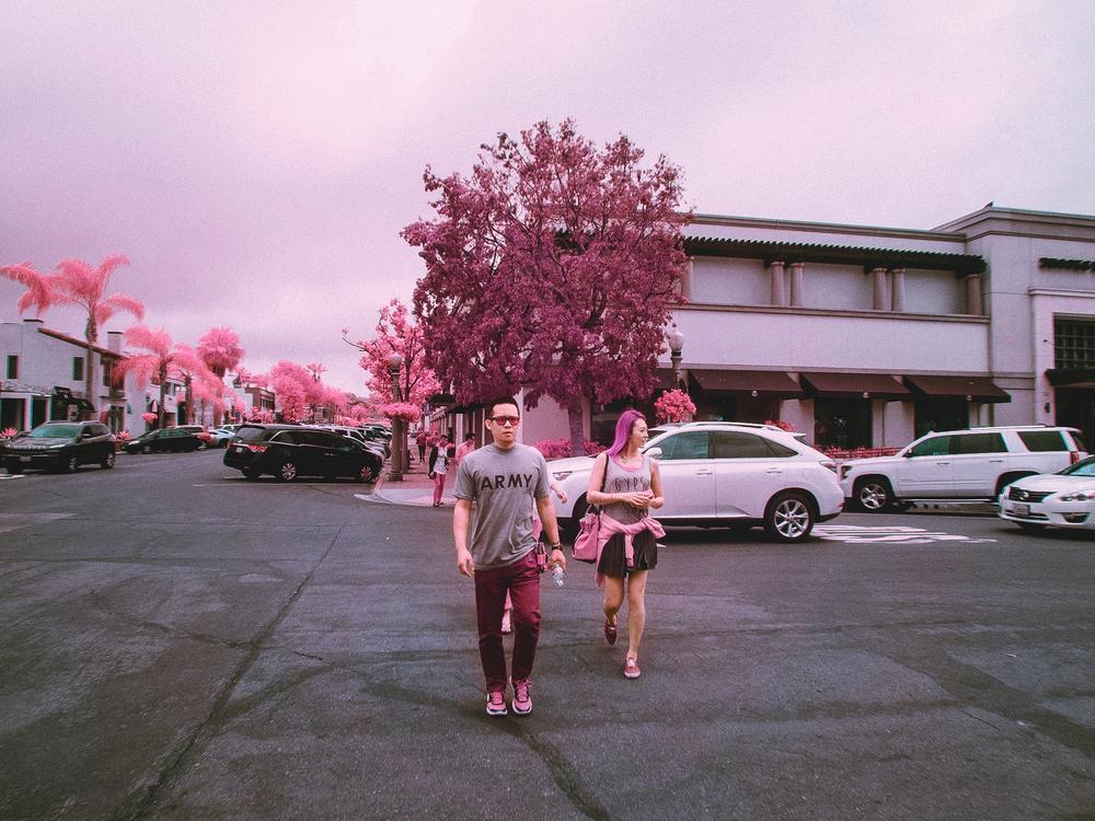IR_pink_sanDiego-5.jpg