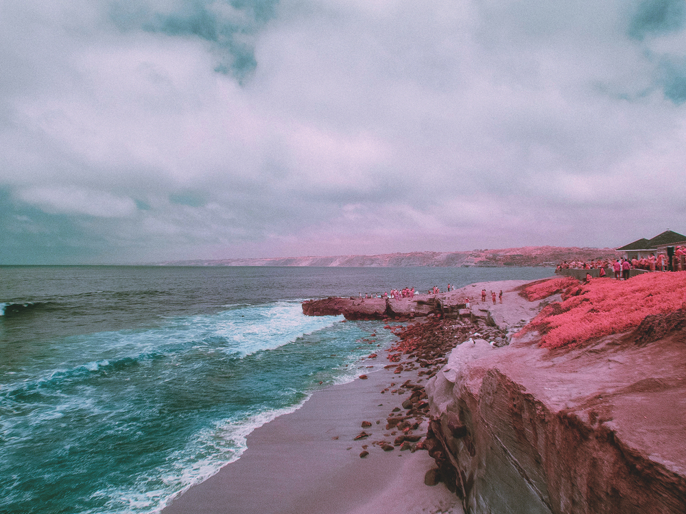 IR_pink_sanDiego-15.jpg