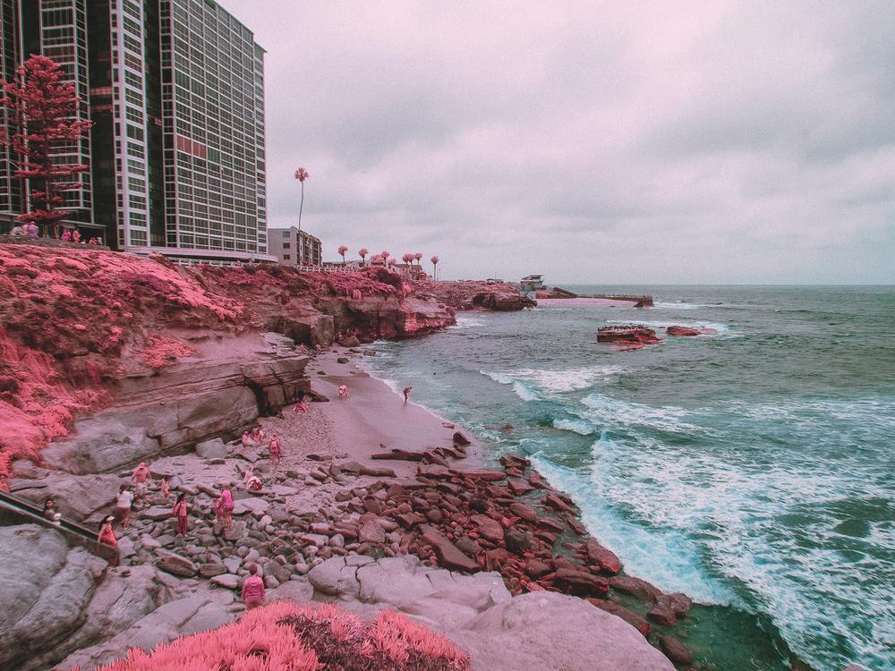 IR_pink_sanDiego-22.jpg