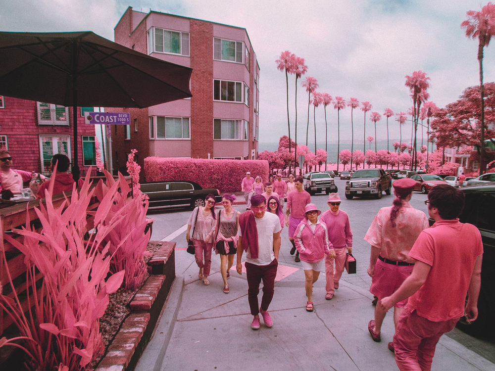 IR_pink_sanDiego-27.jpg