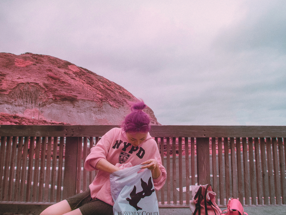 IR_pink_sanDiego-29.jpg