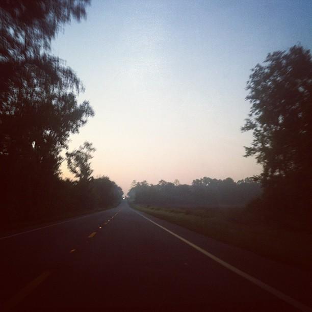 Good morning, Florida.  (Taken with  instagram )