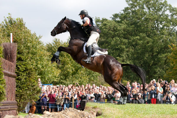 Exponential is an off-the-track Thoroughbred and Olympic 3-Day-Eventing star! Such a cool horse! You have to watch this video of him competing at Burghley (and if you haven't ever seen cross-country before than you REALLY have to watch this!)