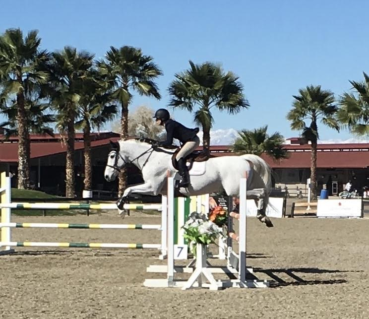Sometimes things don't go as planned. My last horse show in March 2017, before becoming horseless for most of the year.
