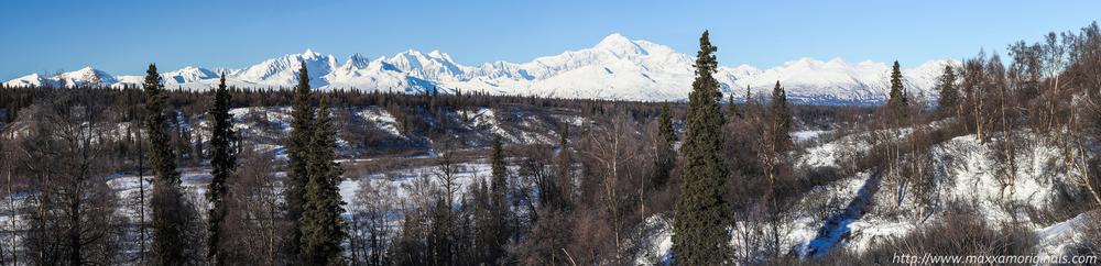 Denali/Mount McKinley Panorama