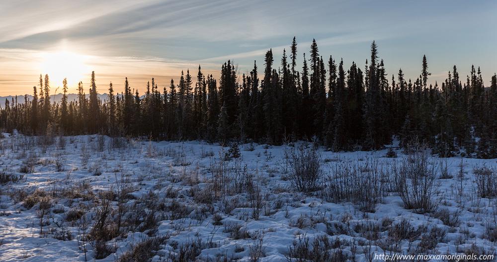 Sunrise from the Alaska Railroad