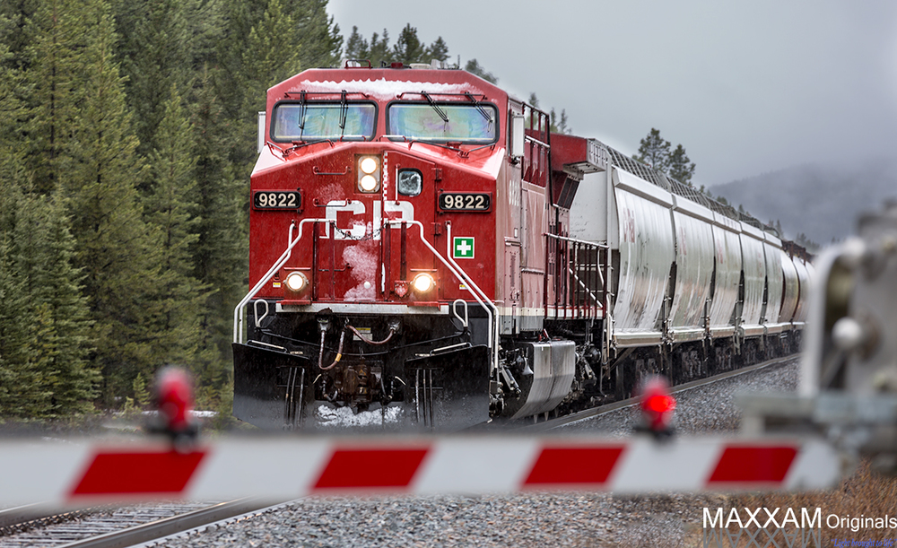 A freight trains makes its way east along the Trans Canada Highway