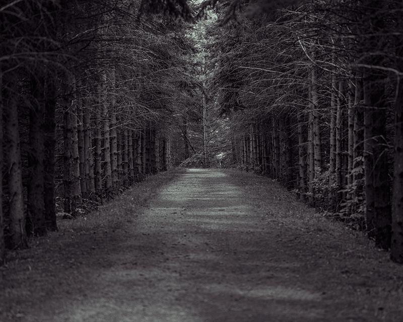 spookypath-fb.jpg